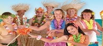 luau party supplies image