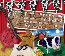 bulk western party supplies and decorations