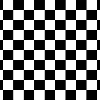 Black and white Checkered Backdrop printed on thin plastic material.