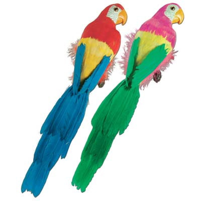 Luau decoration of multi-colored feathered parrots.